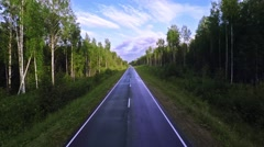 Empty asphalt road with traffic lanes in dense coniferous forest - stock footage