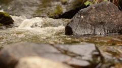 Beautiful serene fresh water mountain creek in lush green summer forest Stock Footage