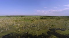 Aerial fly over the big swamp camera forward Stock Footage