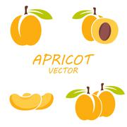 Vector flat apricot icons set - stock illustration