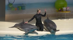 Trainer and two dolphins in dolphinarium Stock Footage