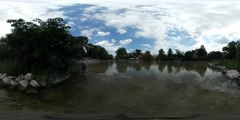 360Vr Video Man is Wading a Lake in Park Green Trees Bank is Decorated With Stock Footage