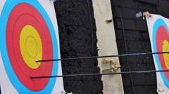 Archery, close up of a target - stock footage