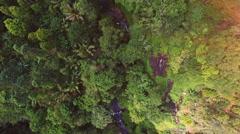 Green Getaway Exotic Paradise, Kauai, Hawaii Stock Footage