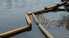 4K Water Pollution Floating on a Lake - stock footage