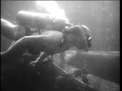 Undersea view of scuba divers swimming by shipwreck, 1960s Stock Footage