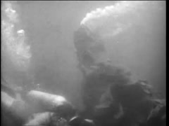 Sea monster attacking scuba diver, 1960s Stock Footage
