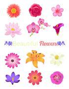 Flower Color Set Design Flat Isolated - stock illustration