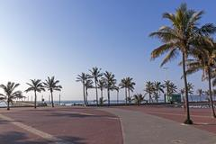 Paved Promenade Palm Trees  Pier and Ocean - stock photo