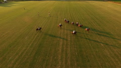 Aerial shot. Polo challenge, sunset. Jockeys chasing the ball. N Stock Footage
