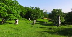 Stone sculptures on a green field in Magura,Romania,made before revolution Stock Footage
