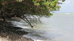 Southern puerto rico coastal beach5 Stock Footage