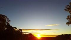 Golden Winter Sunset over Australian Bush  Stock Footage