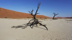 Sunrise landscape of hidden Dead Vlei Stock Footage