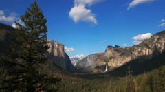 Pine tree and bridal veil falls in yosemite national park Stock Footage