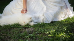 Bride in white dress gently caress samoyed puppy who lies near her legs - stock footage