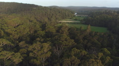 AERIAL: Bridge road leading over the vast green swamp landscape Stock Footage
