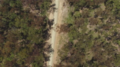 AERIAL: Flying above empty dusty dried up country road in beautiful forest Stock Footage