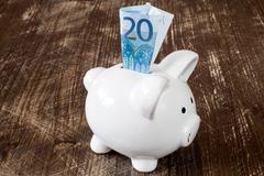 Piggy bank and twenty euro banknote - stock photo