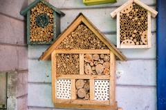 wooden lacewig house for bees - stock photo
