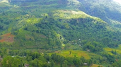 Mountain with tea plantation in Sri Lanka Stock Footage