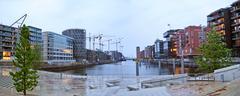 Hamburg Hafencity, panorama Stock Illustration