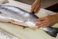Kitchen knife cuts raw fish. Stock Photos