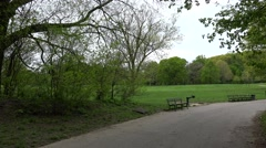 Types of Prospect Park. Green meadow with a footpath. Brooklyn, NYC. Stock Footage