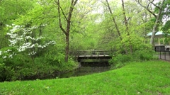 Types of Prospect Park. Bridge over a stream with ducks & Music Pagoda. Brooklyn Stock Footage
