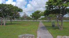 Haulover Park Miami Beach Stock Footage