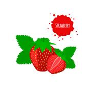 Juicy strawberry with leaves isolated on white - stock illustration