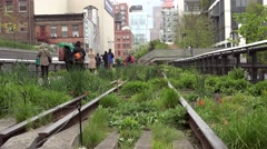 Tourists in the High Line Park at rain. NYC, USA - stock footage