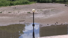 Lake in Waterloo Canada dries up in dry weather and drought Stock Footage