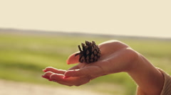 Christmas-tree lump in the hands of a girl Stock Footage