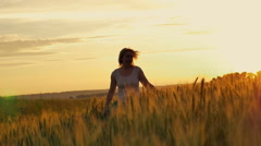 Girl shot of golden wheat in the sun Stock Footage
