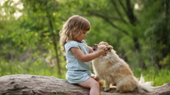 Little girl kisses in nose Spitz Stock Footage