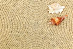 Shells and sea network lie on background made of rope Stock Photos