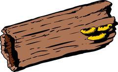 Mushrooms on hollow rotting log Stock Illustration