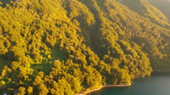 Aerial: Forest To Mountain Pan On Ocean During Sunset in Patagonia Chile 2K Stock Footage