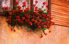Red geranium flower in village house window, painting detail Stock Illustration