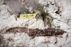 Bloody crime in winter nature - evidences Kuvituskuvat