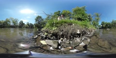 360Vr Video Man Throws a Food to Pigeons Ducks Man is Sitting on a River Bank Stock Footage