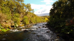 Aerial: Clear Mountain Stream In Forest Low Angle Flyover In Patagonia Chile 2K Stock Footage