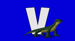 Letter V and  Varanus  (foreground) Stock Footage