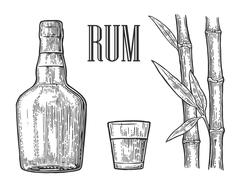 Glass and bottle of rum with sugar cane. Stock Illustration