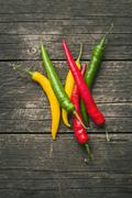 Different colors chilli peppers. - stock photo