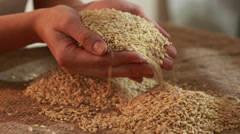 pearl barley spilling on burlap - stock footage