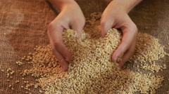 Pearl barley spilling on burlap Stock Footage