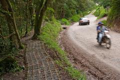 Path and road near Monteverde Costa Rica Kuvituskuvat