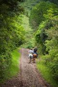 Tourists on horseback in Costa Rica Stock Photos